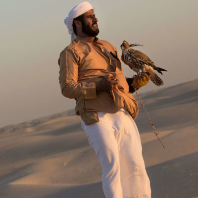 The Bedouin Falconer