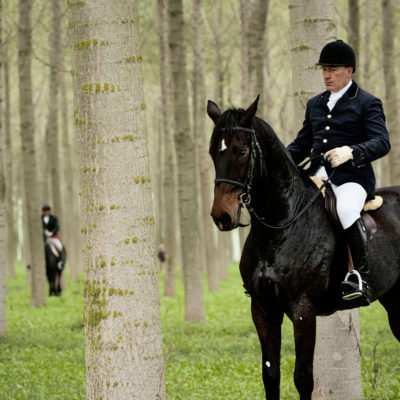 Field Horseman Waiting in a Poplar Grove